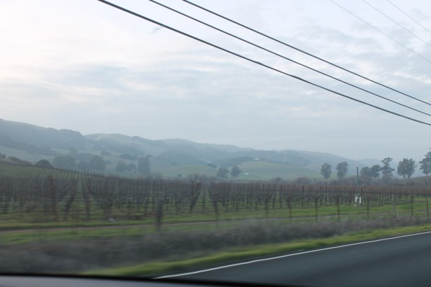 On the road near Napa